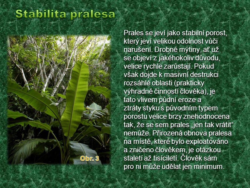  Tropické deštné lesy se nazývají 'největší lékárna světa' pro výskyt velkého počtu přírodních léčiv.