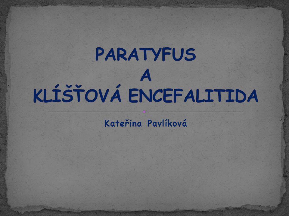 ● Střevní, infekční onemocnění vyvolané bakterií Salmonella paratyphi ● Původci paratyfu jsou: S.