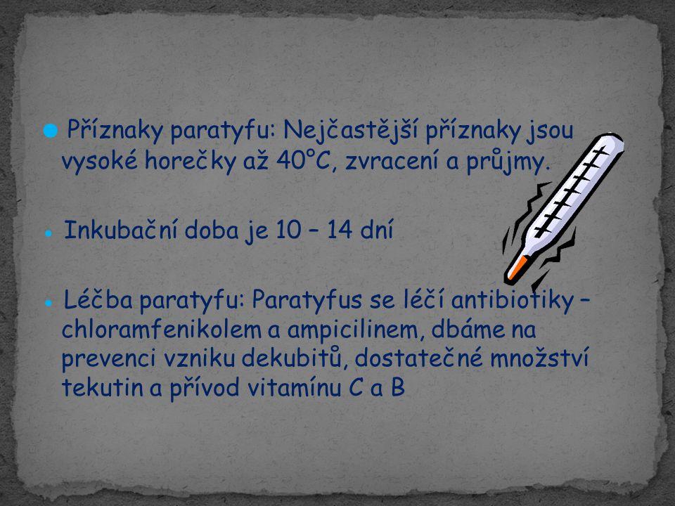 ● Příznaky paratyfu: Nejčastější příznaky jsou vysoké horečky až 40°C, zvracení a průjmy. ● Inkubační doba je 10 – 14 dní ● Léčba paratyfu: Paratyfus