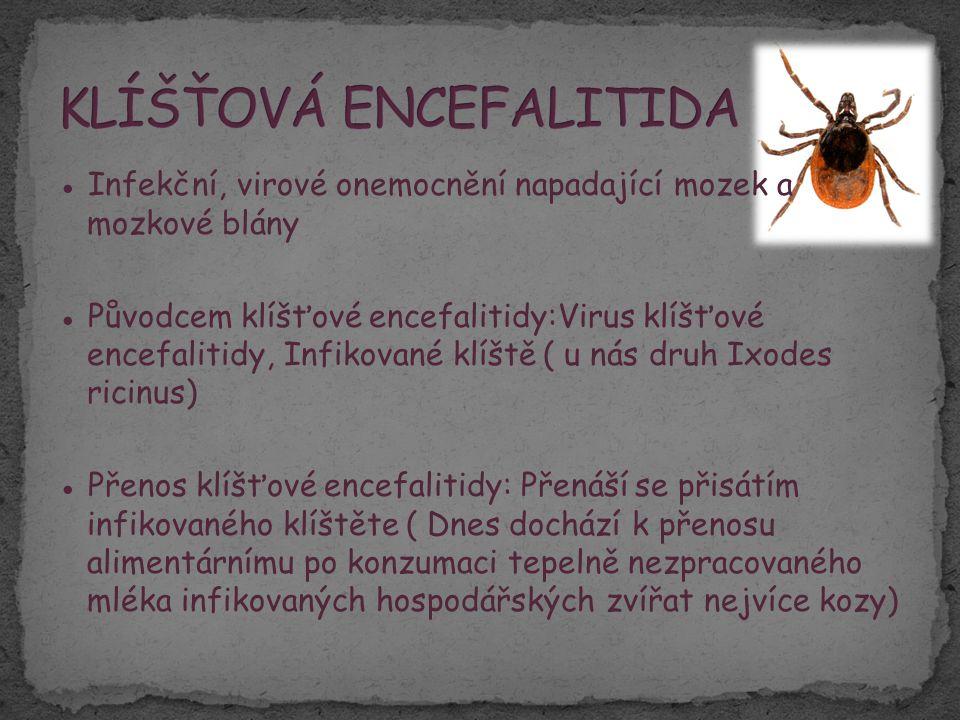 ● Infekční, virové onemocnění napadající mozek a mozkové blány ● Původcem klíšťové encefalitidy:Virus klíšťové encefalitidy, Infikované klíště ( u nás