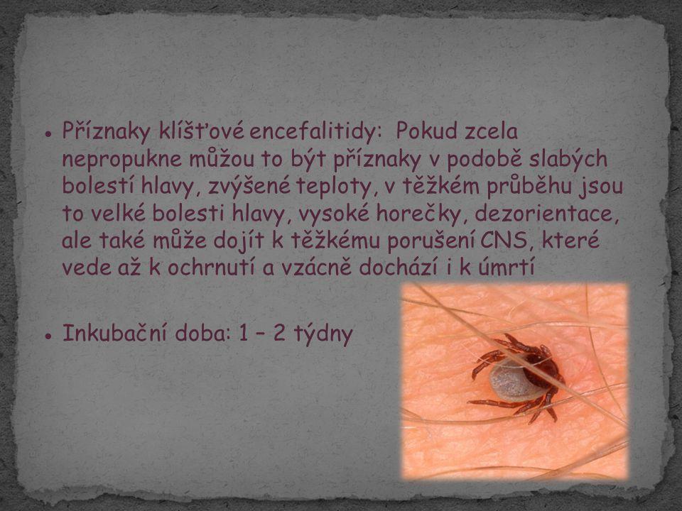 ● Léčba klíšťové encefalitidy: Jedinou léčbou je podání vitaminu a léky tlumící sekundární projevy nemoci, klid na lůžku a u závažných případů se podává interferon ● Očkování: Očkování proti klíšťové encefalitidě je jednou z mála možností jak se ochránit před touto nemocí.