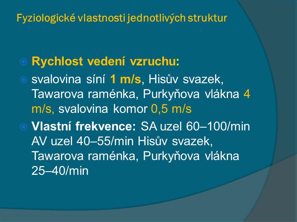 Fyziologické vlastnosti jednotlivých struktur  Rychlost vedení vzruchu:  svalovina síní 1 m/s, Hisův svazek, Tawarova raménka, Purkyňova vlákna 4 m/s, svalovina komor 0,5 m/s  Vlastní frekvence: SA uzel 60–100/min AV uzel 40–55/min Hisův svazek, Tawarova raménka, Purkyňova vlákna 25–40/min
