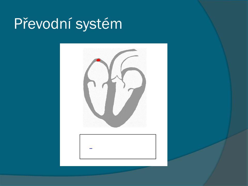 Převodní systém