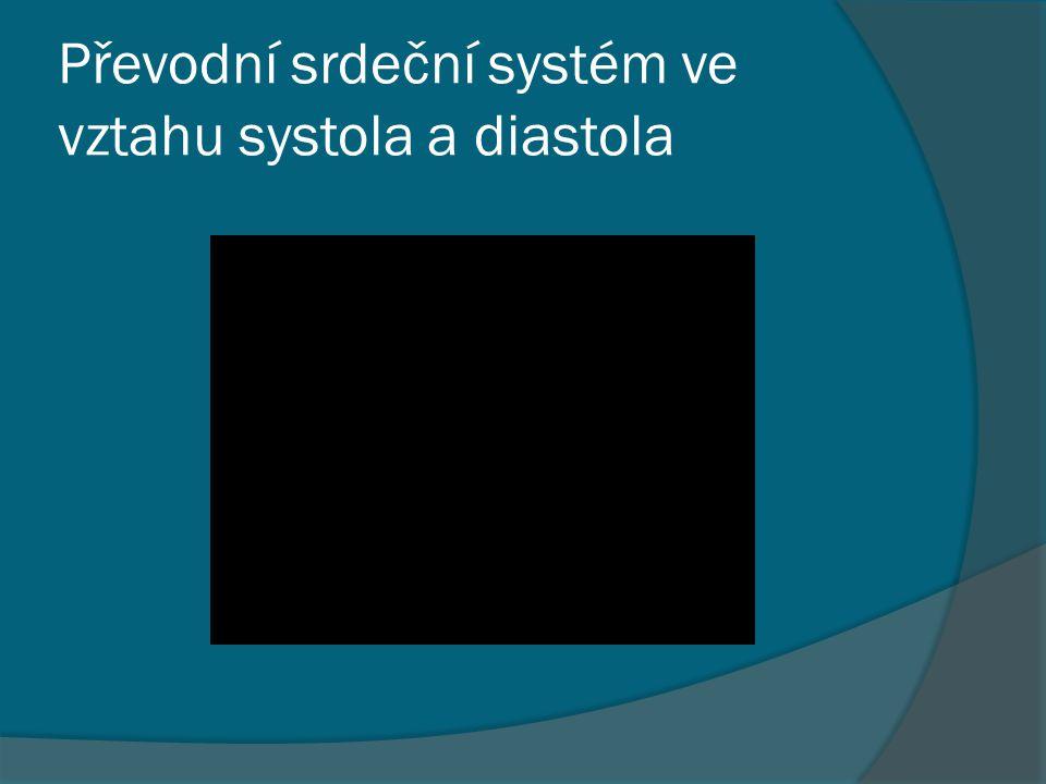 Převodní srdeční systém ve vztahu systola a diastola