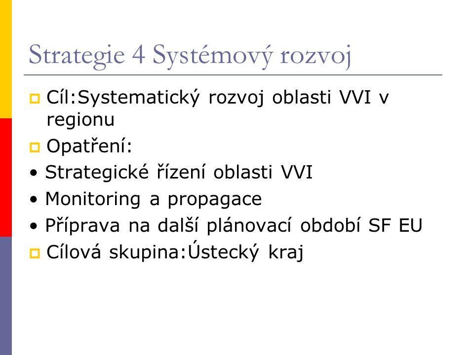 Strategie 4 Systémový rozvoj  Cíl:Systematický rozvoj oblasti VVI v regionu  Opatření: Strategické řízení oblasti VVI Monitoring a propagace Příprav