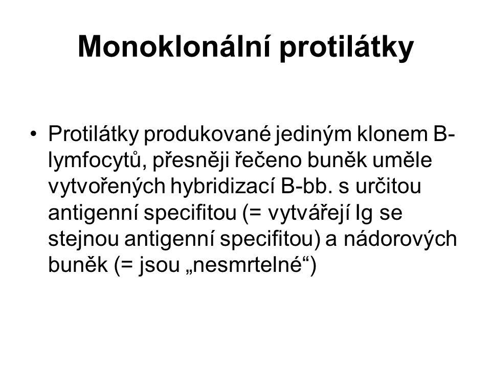 Monoklonální protilátky Protilátky produkované jediným klonem B- lymfocytů, přesněji řečeno buněk uměle vytvořených hybridizací B-bb. s určitou antige