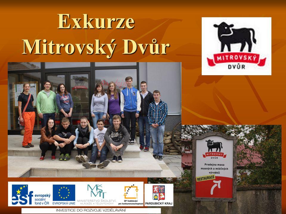 Exkurze Mitrovský Dvůr