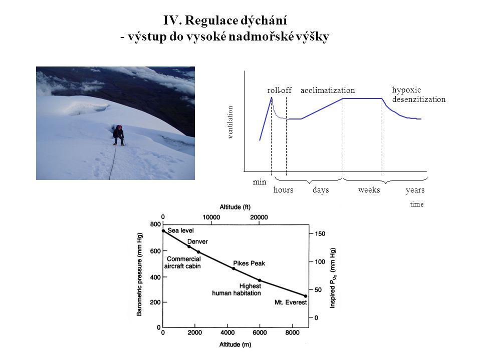 IV. Regulace dýchání - výstup do vysoké nadmořské výšky min hours days weeks years acclimatization hypoxic desenzitization roll - off ventilation time
