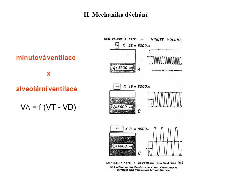 minutová ventilace x alveolární ventilace V A = f (VT - VD) II. Mechanika dýchání