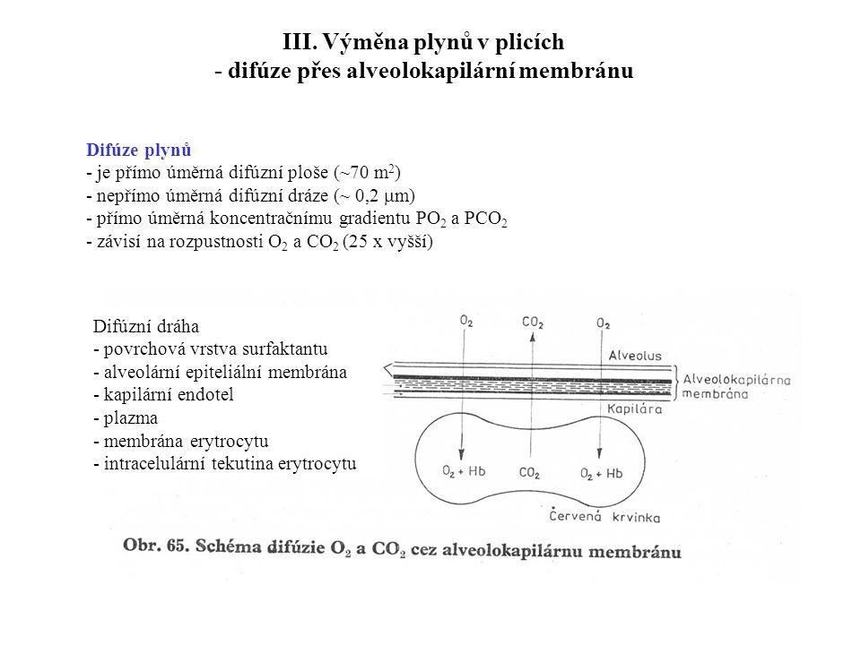 III. Výměna plynů v plicích - difúze přes alveolokapilární membránu Difúzní dráha - povrchová vrstva surfaktantu - alveolární epiteliální membrána - k