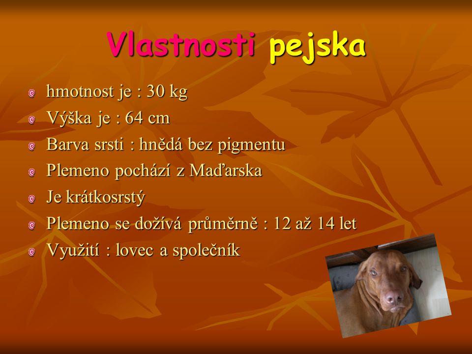 Vlastnosti pejska hmotnost je : 30 kg Výška je : 64 cm Barva srsti : hnědá bez pigmentu Plemeno pochází z Maďarska Je krátkosrstý Plemeno se dožívá průměrně : 12 až 14 let Využití : lovec a společník