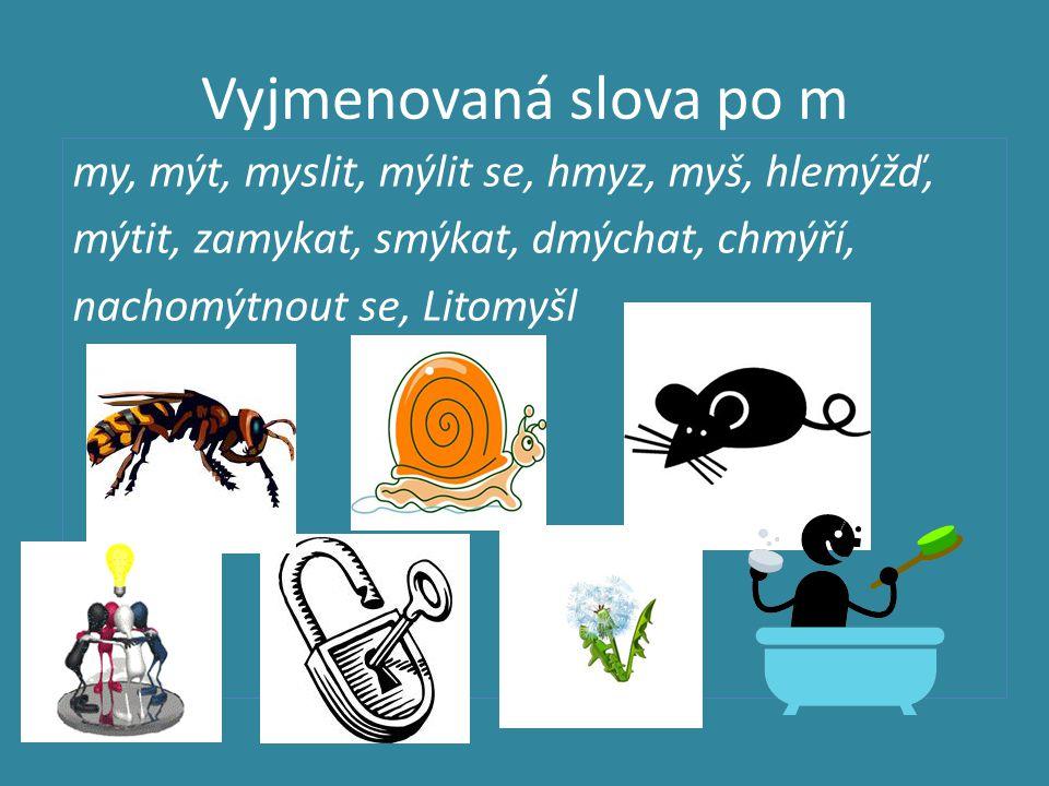 Vyjmenovaná slova po m my, mýt, myslit, mýlit se, hmyz, myš, hlemýžď, mýtit, zamykat, smýkat, dmýchat, chmýří, nachomýtnout se, Litomyšl