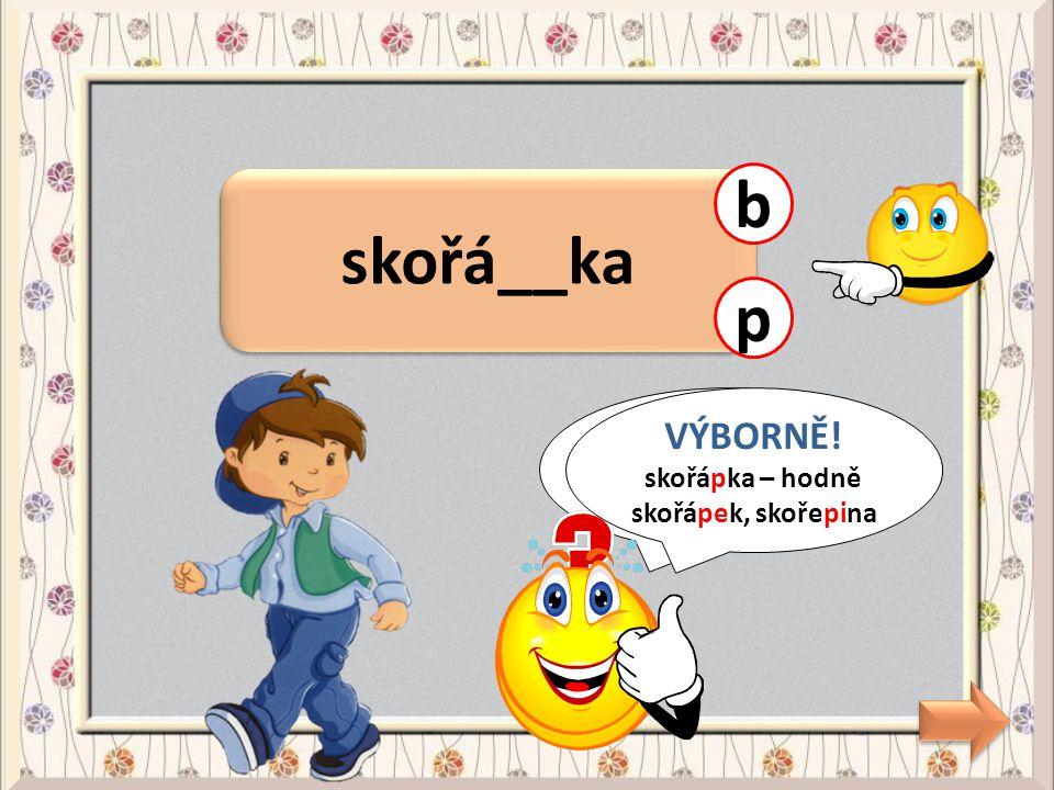 zavolal na Slá__ka zavolal na Slá__ka f CHYBA! na Slávka - Slávek v VÝBORNĚ! na Slávka - Slávek