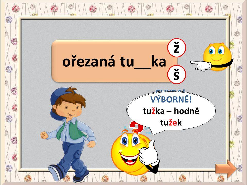 sedmikrása chudo__ka b CHYBA! chudobka - chudoba p VÝBORNĚ! chudobka - chudoba