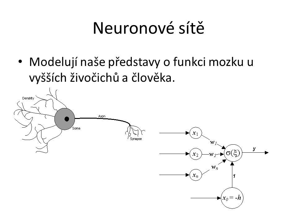 Neuronové sítě Modelují naše představy o funkci mozku u vyšších živočichů a člověka.