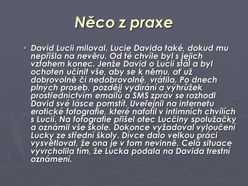 Něco z praxe  David Lucii miloval. Lucie Davida také, dokud mu nepřišla na nevěru. Od té chvíle byl s jejich vztahem konec. Jenže David o Lucii stál
