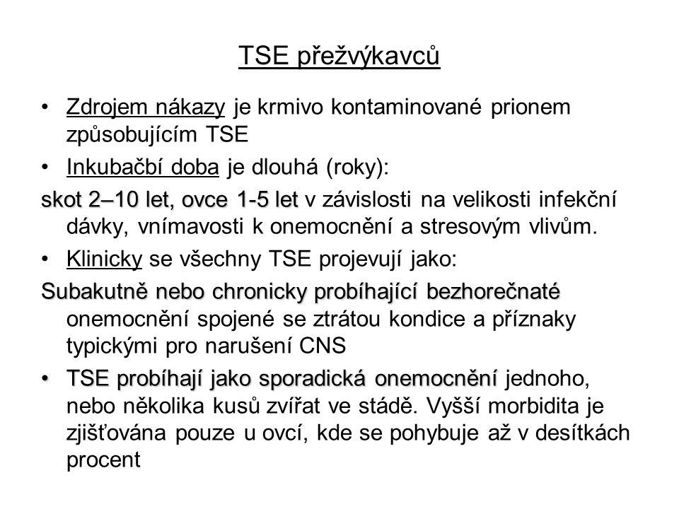 TSE přežvýkavců Zdrojem nákazy je krmivo kontaminované prionem způsobujícím TSE Inkubačbí doba je dlouhá (roky): skot 2–10 let, ovce 1-5 let skot 2–10