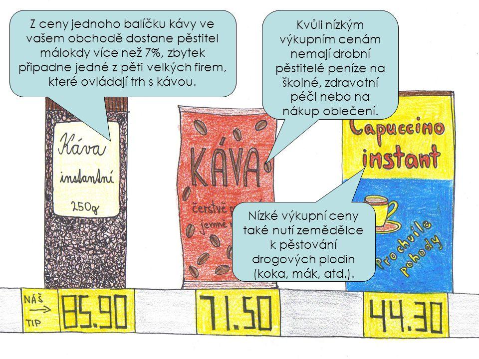 Při pěstování kakaa se na plantážích používají agresivní chemikálie, jejich zbytky se ukládají v tělech lidí i zvířat a znehodnocují vodu a půdu.