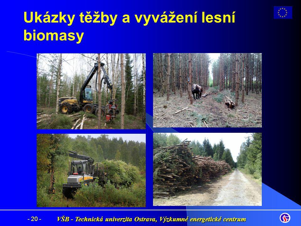VŠB - Technická univerzita Ostrava, Výzkumné energetické centrum - 20 - Ukázky těžby a vyvážení lesní biomasy