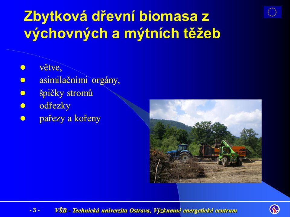 VŠB - Technická univerzita Ostrava, Výzkumné energetické centrum - 3 - Zbytková dřevní biomasa z výchovných a mýtních těžeb větve, asimilačními orgány