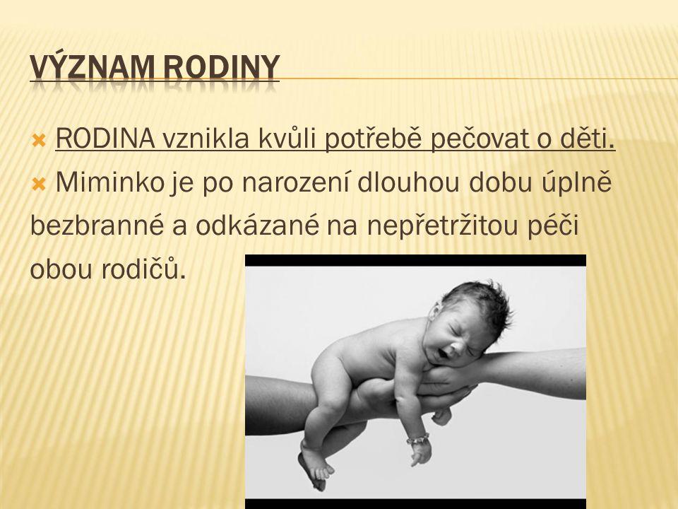  RODINA vznikla kvůli potřebě pečovat o děti.