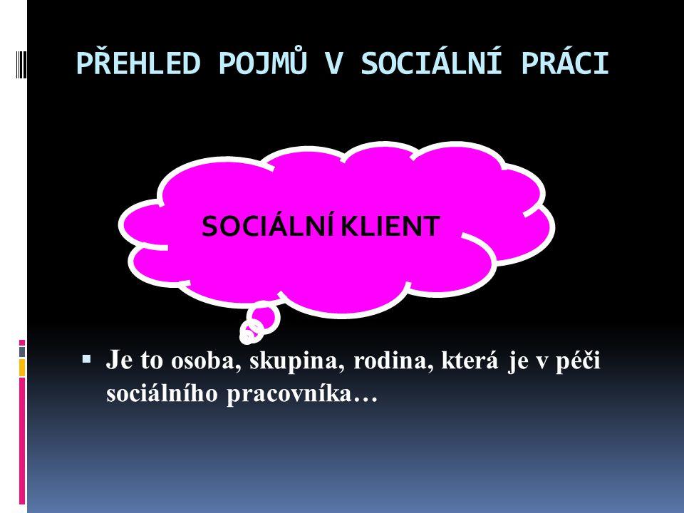 PŘEHLED POJMŮ V SOCIÁLNÍ PRÁCI  Je to osoba, skupina, rodina, která je v péči sociálního pracovníka… SOCIÁLNÍ KLIENT