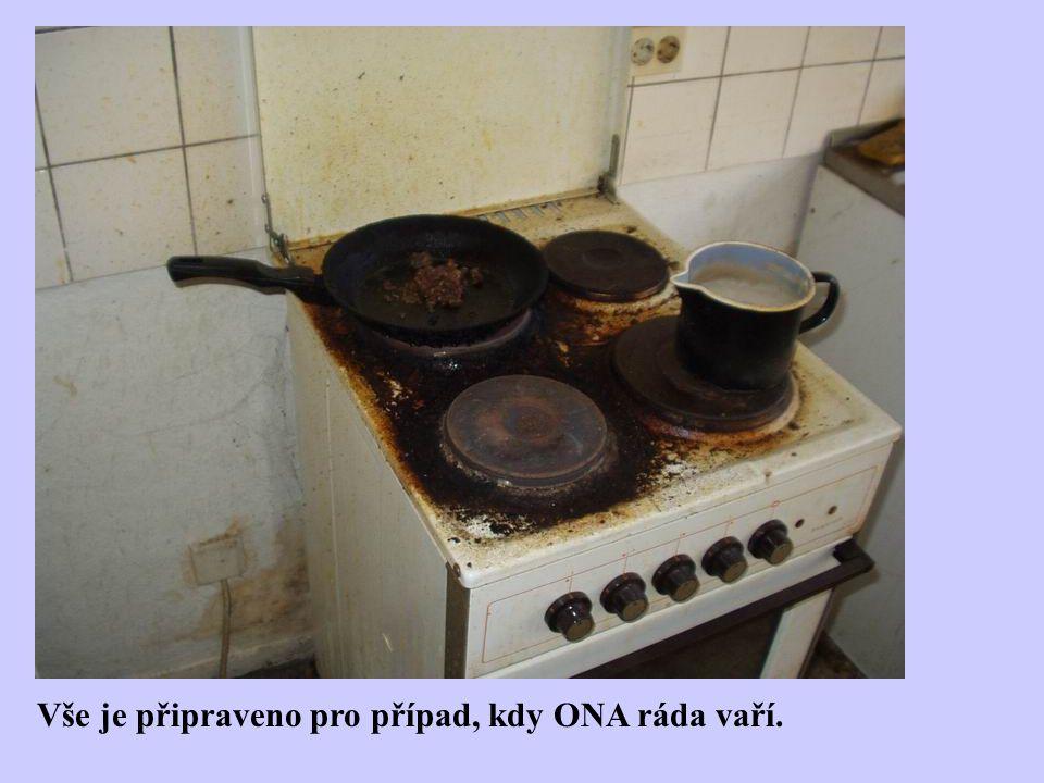 Vše je připraveno pro případ, kdy ONA ráda vaří.