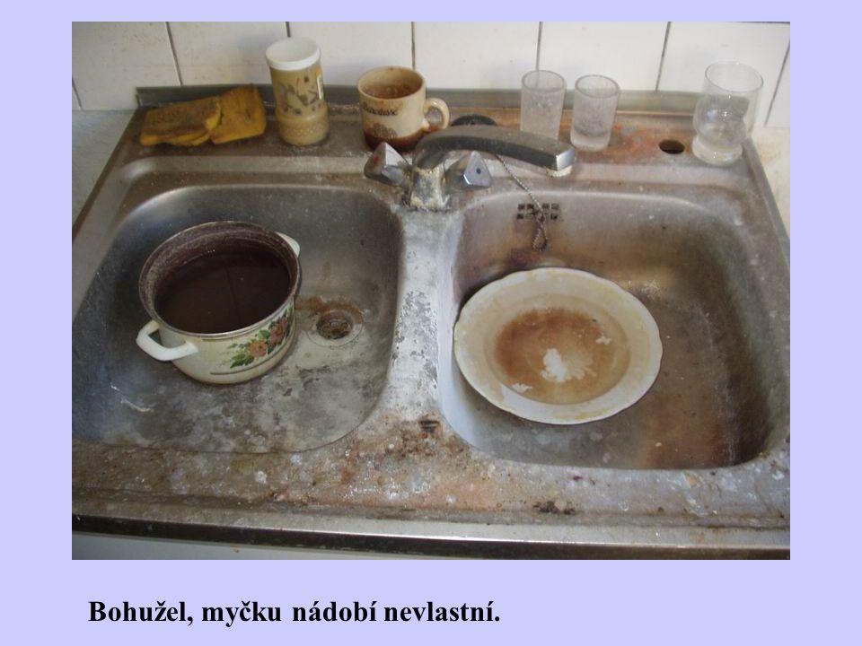 Bohužel, myčku nádobí nevlastní.