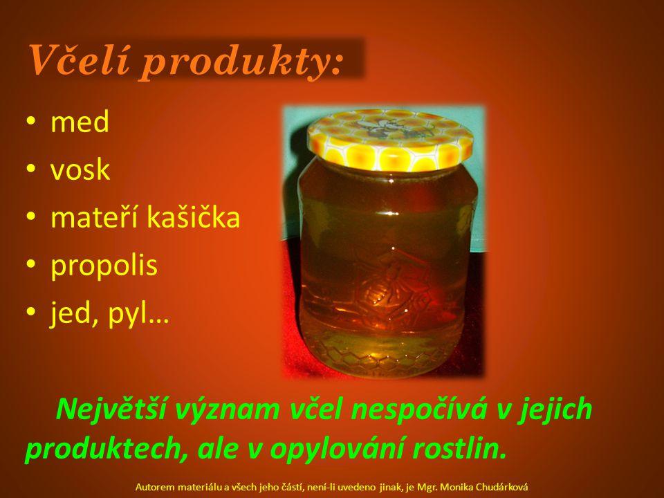 Včelí produkty: med vosk mateří kašička propolis jed, pyl… Největší význam včel nespočívá v jejich produktech, ale v opylování rostlin.