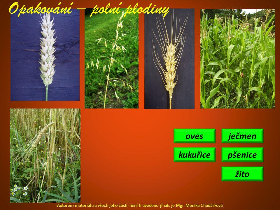 ječmen pšenice žito oves kukuřice Opakování – polní plodiny Autorem materiálu a všech jeho částí, není-li uvedeno jinak, je Mgr.