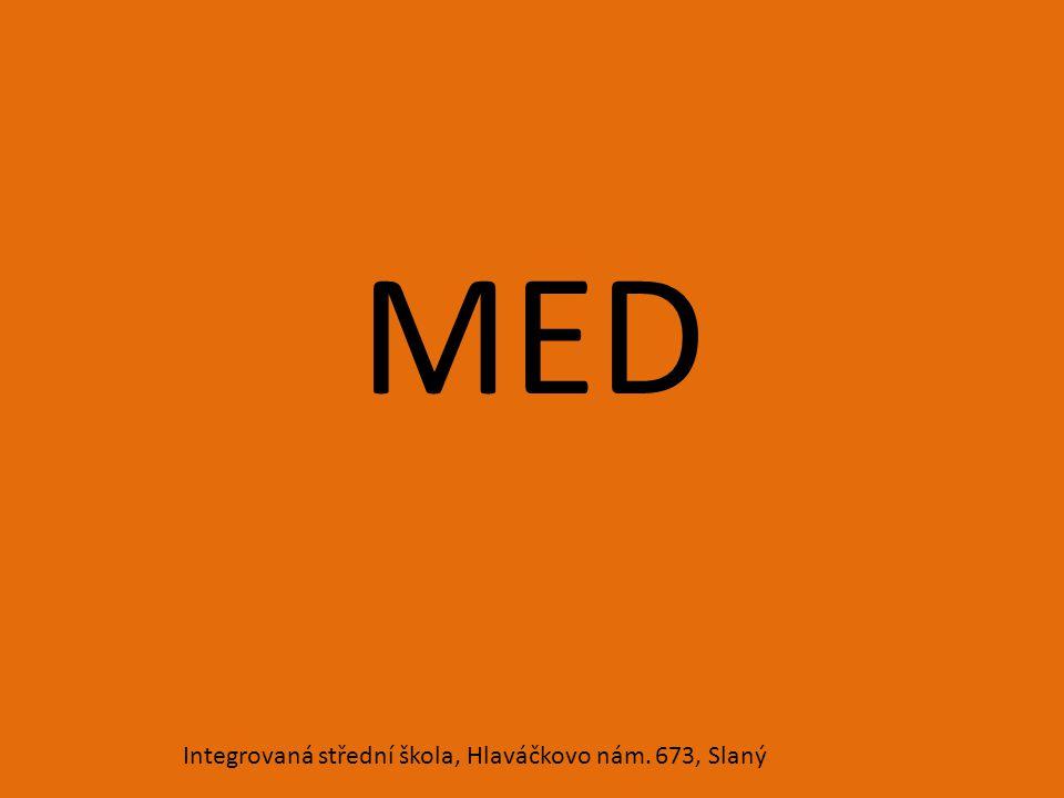 MED Integrovaná střední škola, Hlaváčkovo nám. 673, Slaný