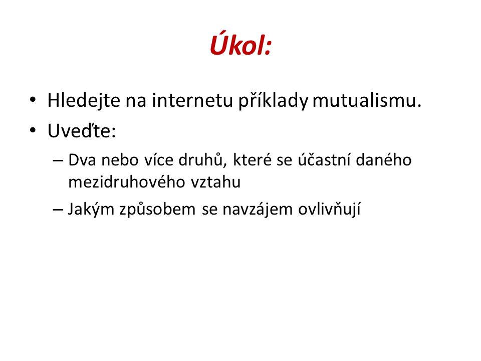 Úkol: Hledejte na internetu příklady mutualismu. Uveďte: – Dva nebo více druhů, které se účastní daného mezidruhového vztahu – Jakým způsobem se navzá