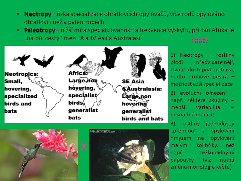 """Neotropy Neotropy – úzká specializace obratlovčích opylovačů, více rodů opylováno obratlovci než v paleotropech Paleotropy Paleotropy – nižší míra specializovanosti a frekvence výskytu, přitom Afrika je """"na půl cesty mezi JA a JV Asií a Australasií x PROČ."""
