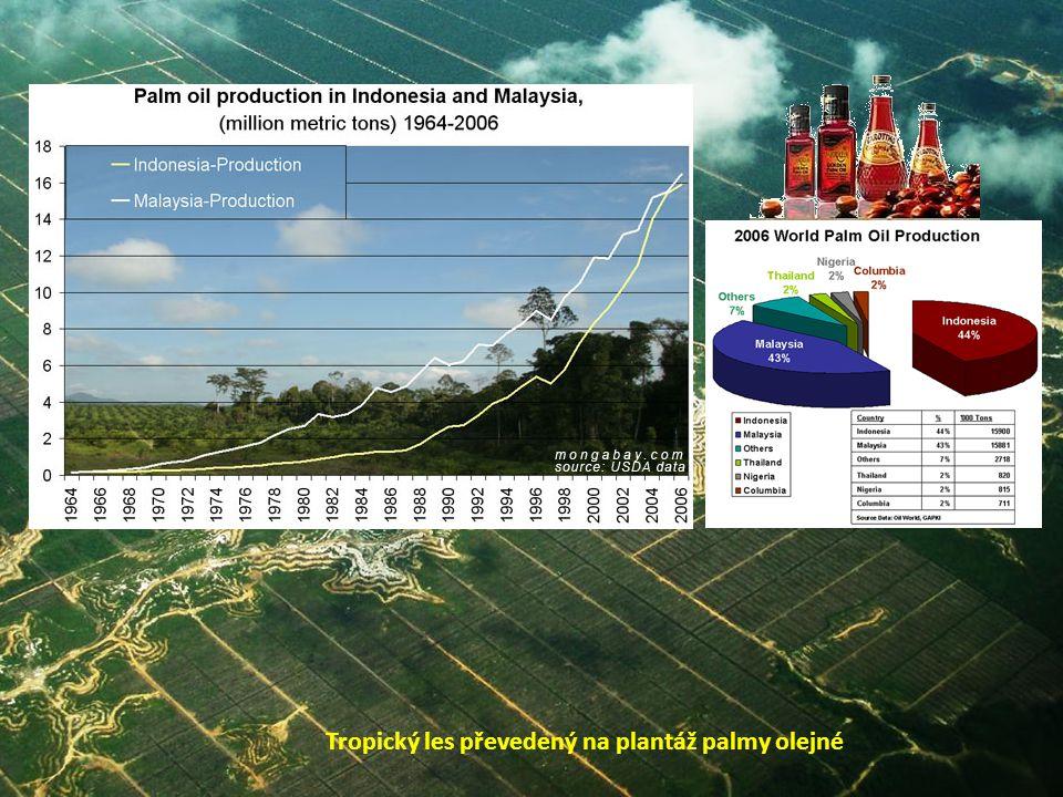 Primární les Primární les po výběrové těžbě Tropický les převedený na plantáž palmy olejné