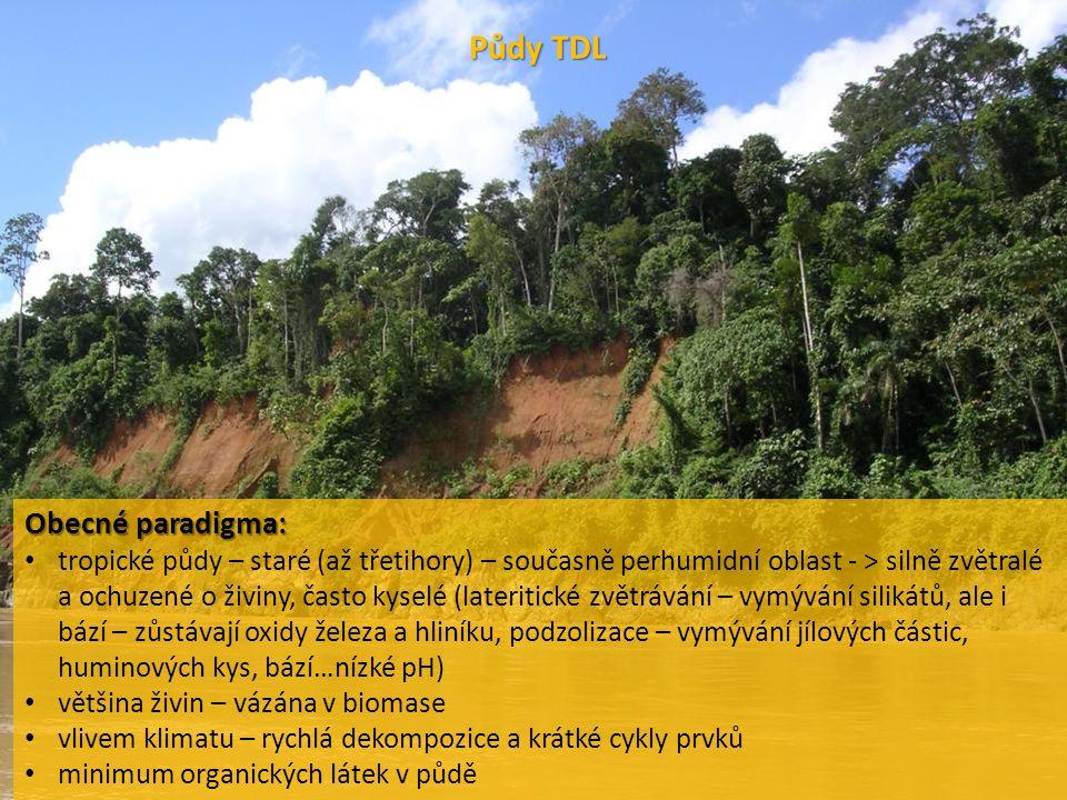 """platí často, ale NE VŽDY (viz várzea – Amazonie – inundační zóna """"white waters , mladší vulkanické substráty – Indonésie, PNG – bohaté na živiny) …vers."""