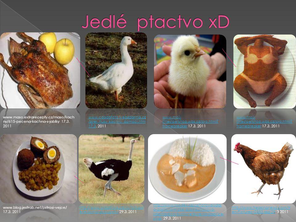 www.cdadafoto.webzdarma.cz /zver_husy_kachny_domaci.htm 17.3www.cdadafoto.webzdarma.cz /zver_husy_kachny_domaci.htm 17.3.
