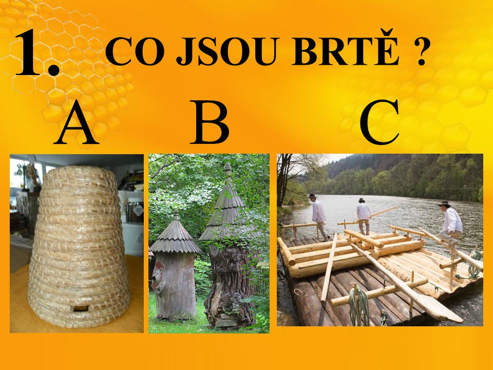 1. CO JSOU BRTĚ ? A B C
