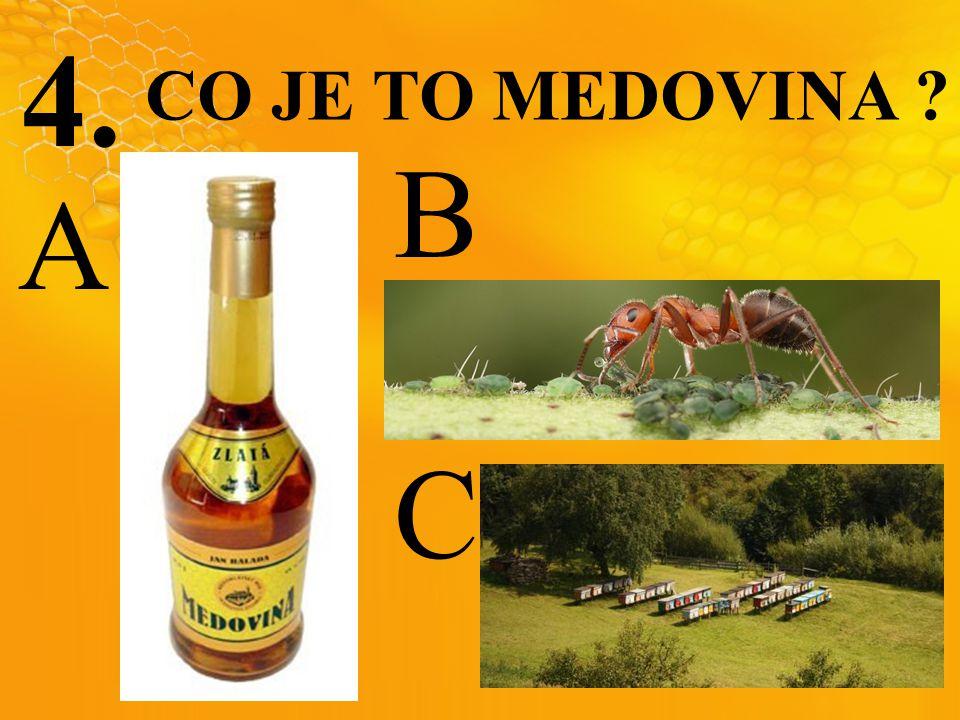 4. CO JE TO MEDOVINA ? C B A