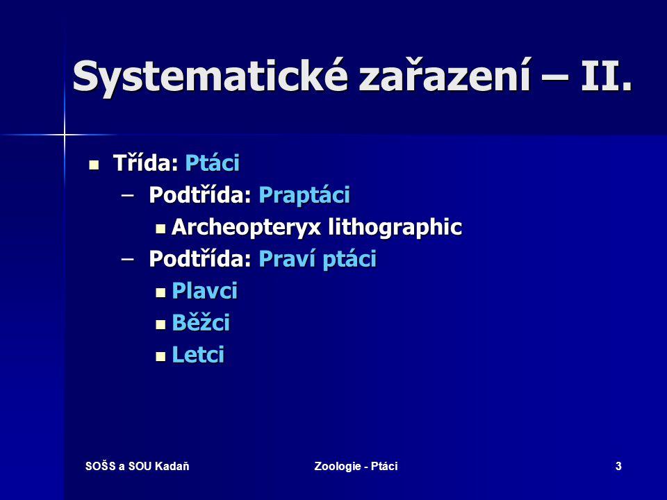 SOŠS a SOU KadaňZoologie - Ptáci3 Systematické zařazení – II. Třída: Ptáci Třída: Ptáci – Podtřída: Praptáci Archeopteryx lithographic Archeopteryx li