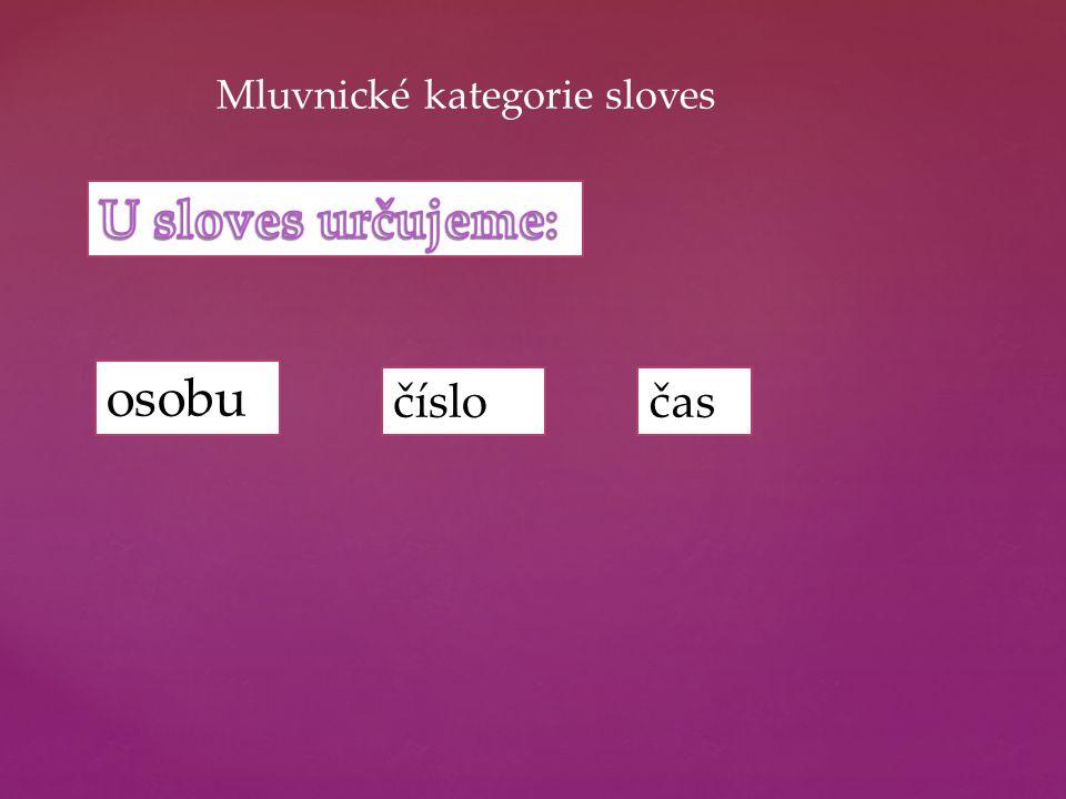 Mluvnické kategorie sloves osobu časčíslo