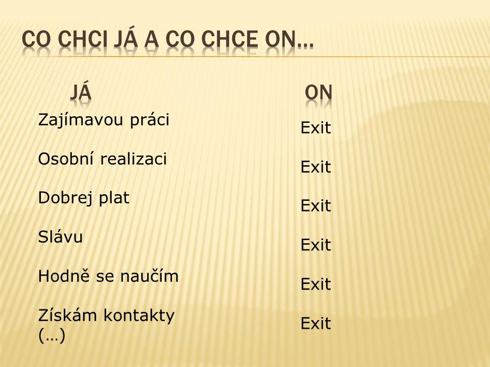 Zajímavou práci Osobní realizaci Dobrej plat Slávu Hodně se naučím Získám kontakty (…) Exit