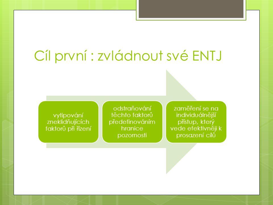 Cíl první : zvládnout své ENTJ vytipování zneklidňujících faktorů při řízení odstraňování těchto faktorů předefinováním hranice pozornosti zaměření se