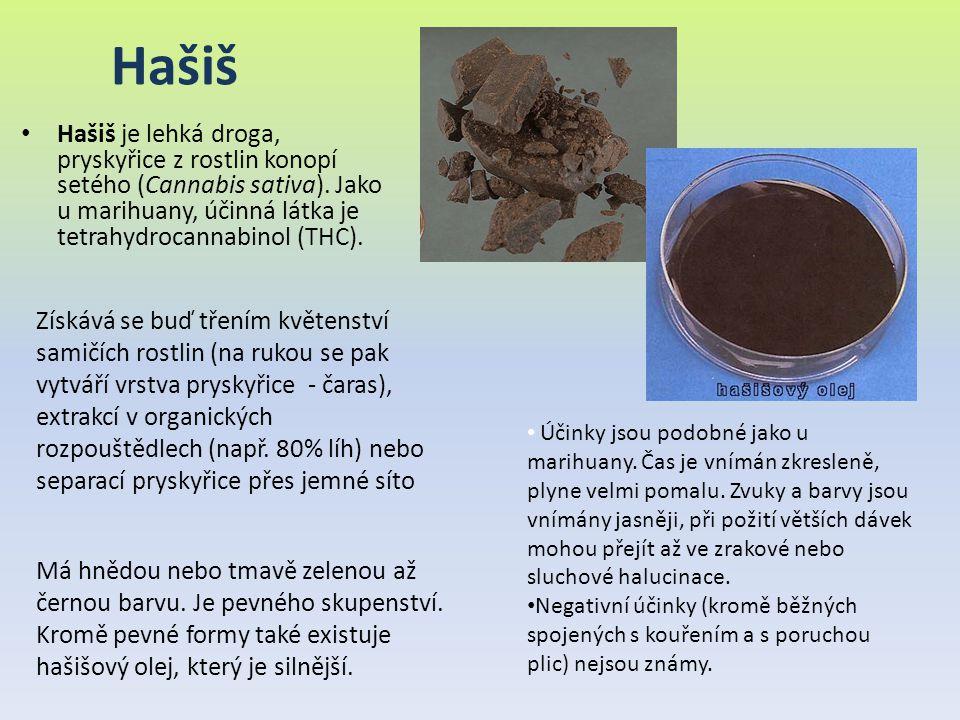 Hašiš Hašiš je lehká droga, pryskyřice z rostlin konopí setého (Cannabis sativa). Jako u marihuany, účinná látka je tetrahydrocannabinol (THC). Účinky