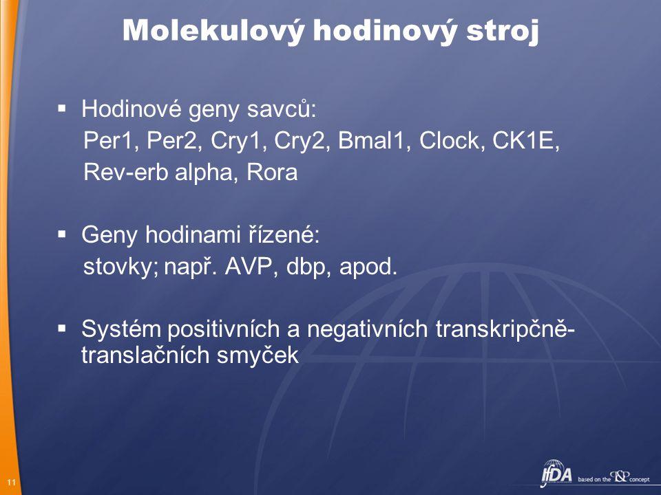 11 Molekulový hodinový stroj  Hodinové geny savců: Per1, Per2, Cry1, Cry2, Bmal1, Clock, CK1E, Rev-erb alpha, Rora  Geny hodinami řízené: stovky; na
