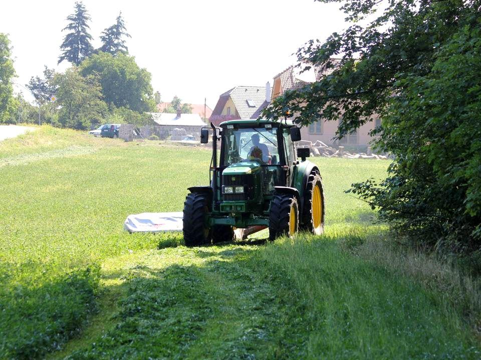 Tak zase pomalu domů lesní cestičkou, mezi stromy se dívat a poslouchat hučení traktoru….