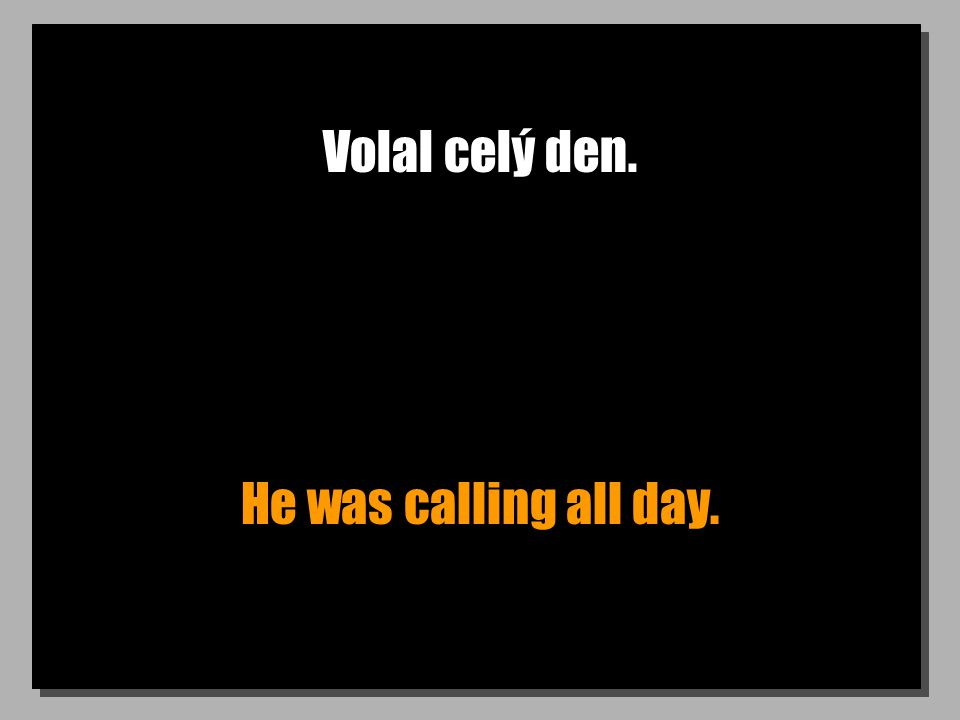 Volal celý den. He was calling all day.