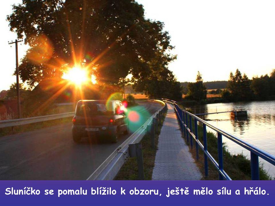 Za krásného letního podvečera jsem se vydal na malou procházku. Kam jinam, než zase k rybníčku.