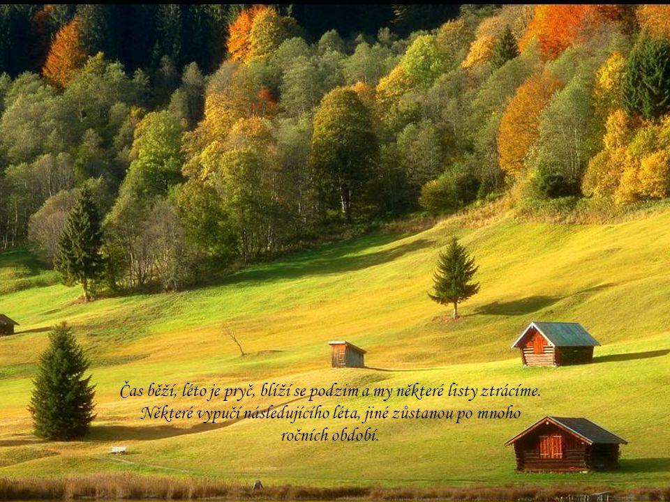 Čas běží, léto je pryč, blíží se podzim a my některé listy ztrácíme.