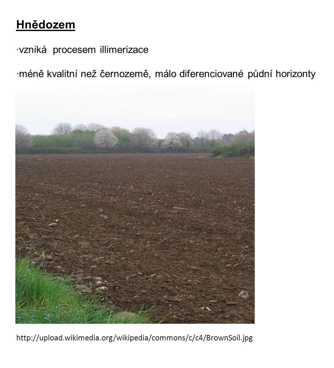 http://upload.wikimedia.org/wikipedia/commons/c/c4/BrownSoil.jpg Hnědozem ·vzniká procesem illimerizace ·méně kvalitní než černozemě, málo diferenciované půdní horizonty