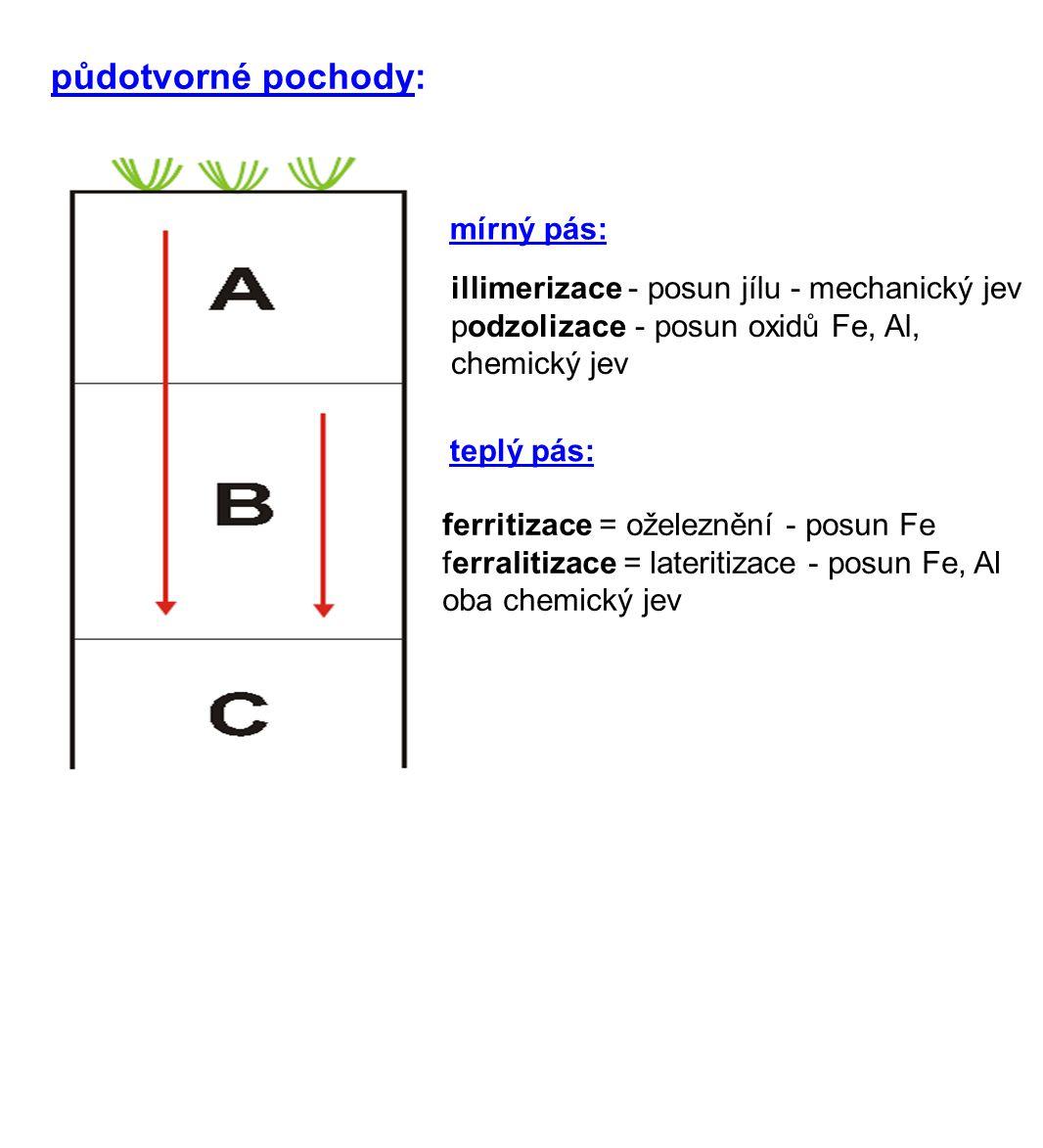 mírný pás: teplý pás: ferritizace = oželeznění - posun Fe ferralitizace = lateritizace - posun Fe, Al oba chemický jev illimerizace - posun jílu - mechanický jev podzolizace - posun oxidů Fe, Al, chemický jev půdotvorné pochody: